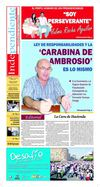 Periodico Independiente Edicion 232