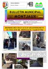 Bulletin n62 juillet 2011