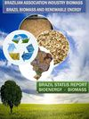 Brazil Status Report 2011 Renewable Energy-Bioenergy-Biomass